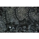 Black and silver leaf sequin embroidery on black chiffon