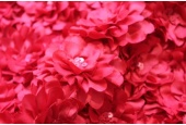 Flower and Sequin Applique on Silk Chiffon - Red