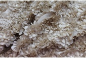 Flower and Sequin Applique on Silk Chiffon - Oyster