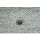 Round Corded Ball Button - Ivory - Large