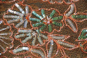 Brown cotton lace with orange/clear bugle beads, plus green/clear round sequins in a floral/leaf pattern