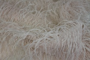 Beads and Ostrich Feathers on Tulle - Pale Pink