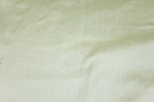 Silk Dupion - Cream - B12