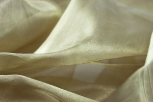 Silk Organza - Metallic Gold