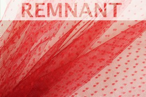 REMNANT - Spot Tulle - Red - 0.4m piece